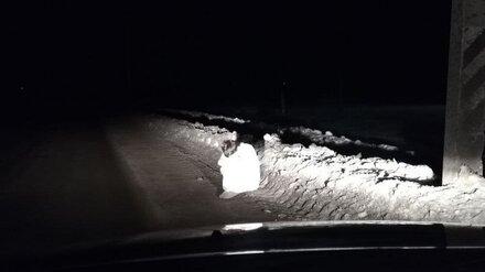 На обочине воронежской дороги ночью в -13 нашли раздетую женщину