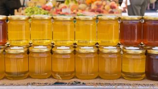 Воронежцев позвали пополнить свои запасы свежим майским мёдом