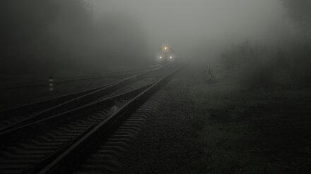 Ночью в Воронежской области тепловоз насмерть сбил 12-летнюю девочку