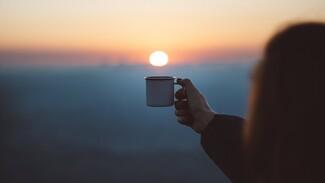 Воронежские филологи объяснили смысл выражения «кофейная барышня»