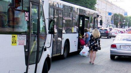 Мэрия Воронежа расспросит воронежцев о будущем общественного транспорта