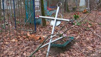 Грабят и сдают в металлолом. Как вандалы уничтожают воронежские кладбища