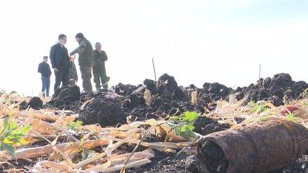 В Воронежской области на месте бывшего концлагеря обнаружили останки 564 солдат