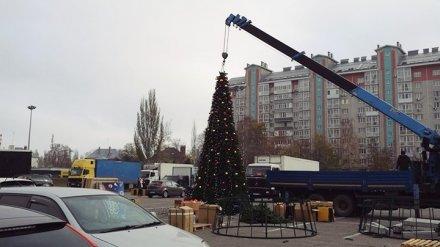 В Воронеже в конце октября установили первую новогоднюю ёлку