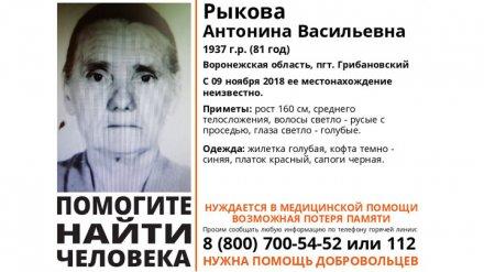 В Воронежской области потерялась старушка в красном платке