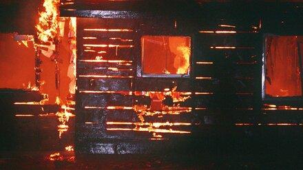 В Воронежской области из горящего дома спасли двух детей: их бабушка погибла