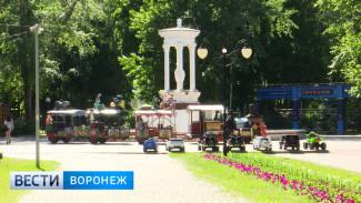 Власти Воронежа приступят к реконструкции «Орлёнка» и «Литературного парка» в 2019 году