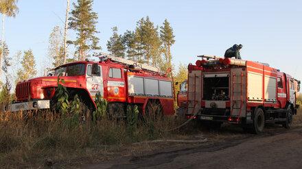 Спасатели потушили второй из трёх крупных пожаров в Воронежской области