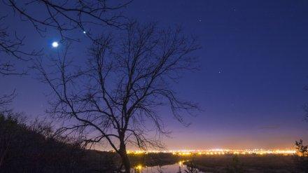 Смотрели на Венеру и жарили шашлык. Как воронежцы провели первые карантинные выходные