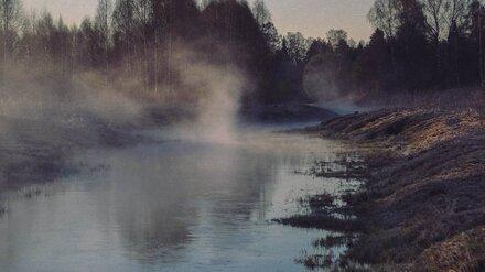 Труп без вести пропавшего мужчины нашли на берегу пруда в Воронежской области