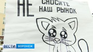 Воронежские предприниматели требуют от чиновников не сносить их киоски