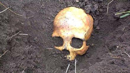 В Воронежской области новый хозяин дома нашёл в погребе останки человека