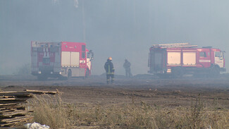 Крупный пожар с угрозой жилым домам произошёл под Воронежем