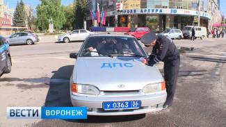 В Воронеже с жезлом в руках работал глава областной ГИБДД