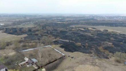 Спасатели предупредили воронежцев об усилении ветра и опасности пожаров