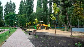 На улицах и в скверах Воронежа до конца осени высадят около 700 деревьев