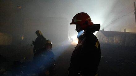 В Воронежской области локализовали один из трёх крупнейших лесных пожаров