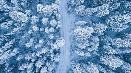 Глава Гидрометцентра прокомментировал прогноз о суровой зиме в России