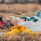 На Воронежскую область надвигается аномальное потепление
