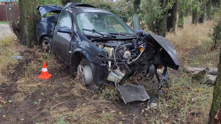 В Воронеже Nissan вылетел с дороги в тополиную аллею: ранена женщина