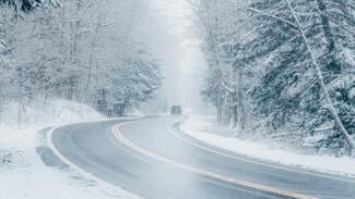 Автобус с 5 детьми и 11 взрослыми в жуткий мороз сломался на воронежской трассе