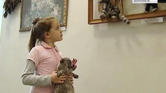 В Воронеже открылась выставка главного художника кукольного театра