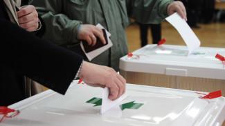 В Воронежской области в единый день голосования явка составила 49%
