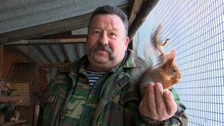 Житель Воронежской области завёл в доме 15 белок