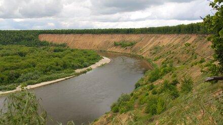 Эксперты проверят качество воды в реке Дон в Воронежской области