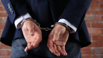 Под Воронежем осудили попавшегося на коррупции экс-замглавы села