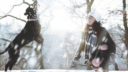 Воронежцам пообещали снежные и морозные выходные