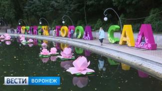 В 2018 году разработка концепции воронежского фестиваля «Город-сад» подешевеет на треть