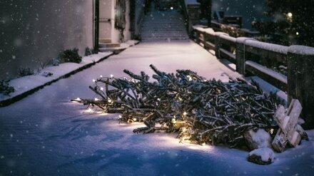 Улицу в центре Воронежа закроют на ночь для уборки снега