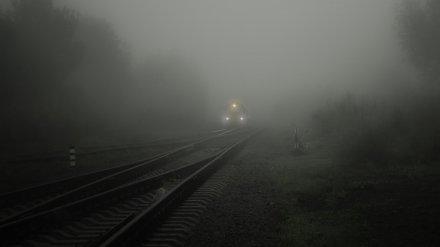 Метеорологи рассказали, дойдёт ли до Воронежской области опасный смог из Киева