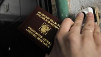 Под Воронежем должник отработает 250 часов на благо общества за оскорбление приставов