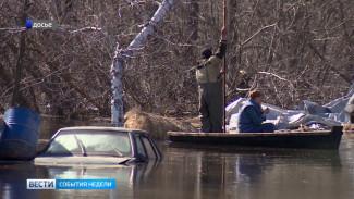 Какие районы попадут на карту зон затопления Воронежской области