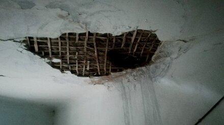Дыры в потолке и отсутствие воды. Воронежец пожаловался на ужасные условия жизни бабушки