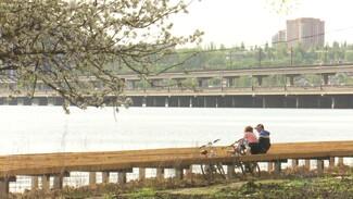 Карусели из детства и пирс. Обновление парка «Дельфин» в Воронеже приблизилось к финалу