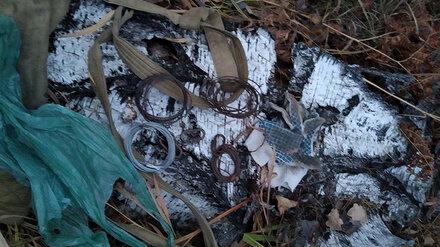 В Воронежском заповеднике поймали браконьеров с молотком