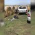 Появилось фото задержания подозреваемого в расстреле семьи и взрыве воронежского ОМВД