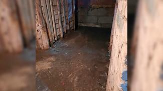 Коммунальщики осушили «болото» в подвале дома в Воронеже