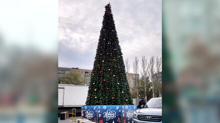 В Воронеже поставили первую новогоднюю ёлку