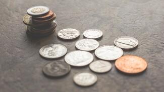 Коллекционер из Воронежа потеряла деньги при покупке старинных монет