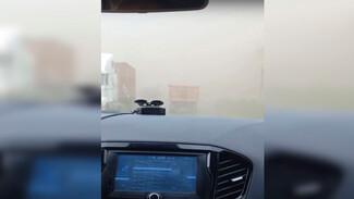 Песчаная буря ослепила автомобилистов на воронежской трассе