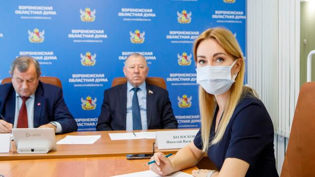 В Воронежской области увеличат грантовую поддержку концертной деятельности