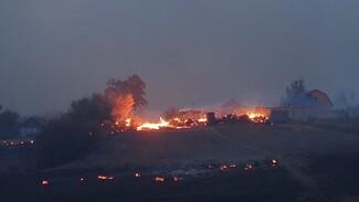 В воронежском селе лесной пожар уничтожил 25 домов: жителей эвакуировали