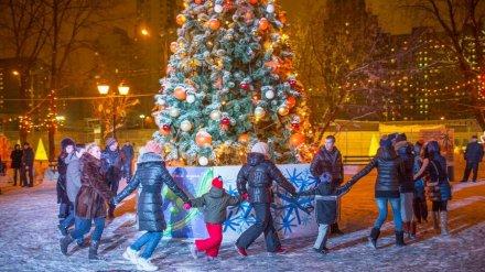 Метеорологи дали прогноз на Новый год в Воронежской области