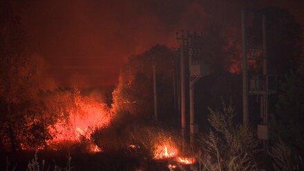 В Воронежской области ландшафтный пожар распространился на 30 га