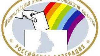 В Воронежской области вновь назначены выборы