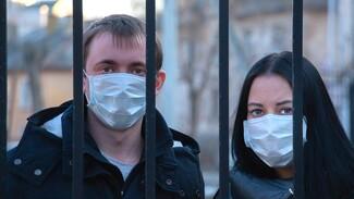Россиян предупредили о всплеске коронавируса на следующей неделе